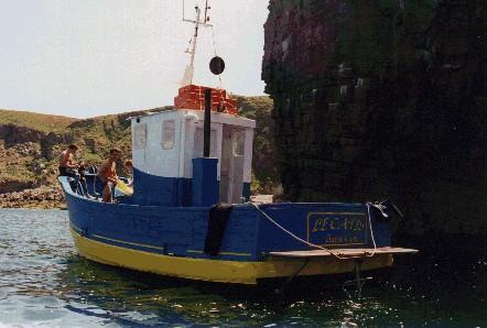 2005 - Catis-1